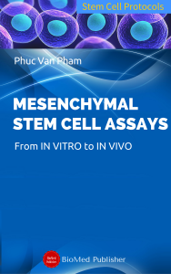 Cover for Mesenchymal Stem Cell Assays: Characterization and Authentication